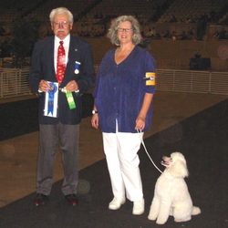 Zipper wins first place in Open B at the Golden Gate Kennel Club Trial, January 2007.