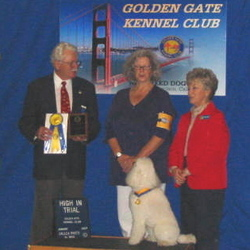 Zipper took High In Trial at the Golden Gate Kennel Club Trial in January 2007.