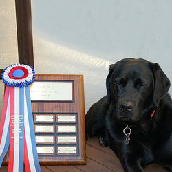 Meg poses with the AOCNC Novice Trophy won by SLDTC dogs in June 2005.